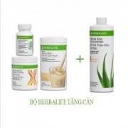 HERBALIFE - Bộ 4 sản phẩm hỗ trợ tăng cân (F1, PPP, F2, Lô hội)